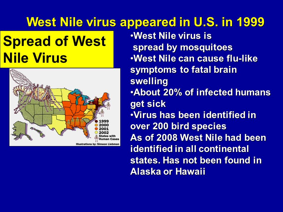 West Nile virus appeared in U.S.