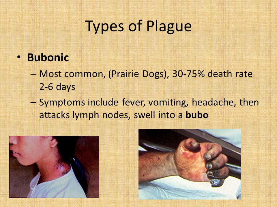 Types of Plague Bubonic – Most common, (Prairie Dogs), 30-75% death rate 2-6 days – Symptoms include fever, vomiting, headache, then attacks lymph nodes, swell into a bubo