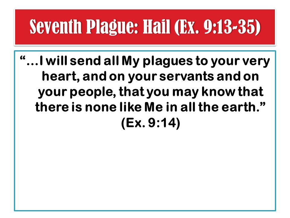 Seventh Plague: Hail (Ex. 9:13-35)Seventh Plague: Hail (Ex.