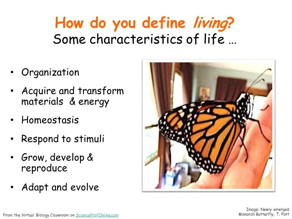 How do you define living.