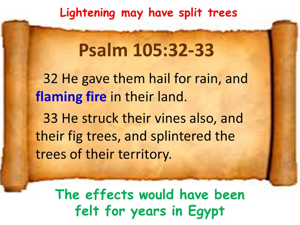Psalm 105:32-33 32 He gave them hail for rain, and flaming fire in their land.