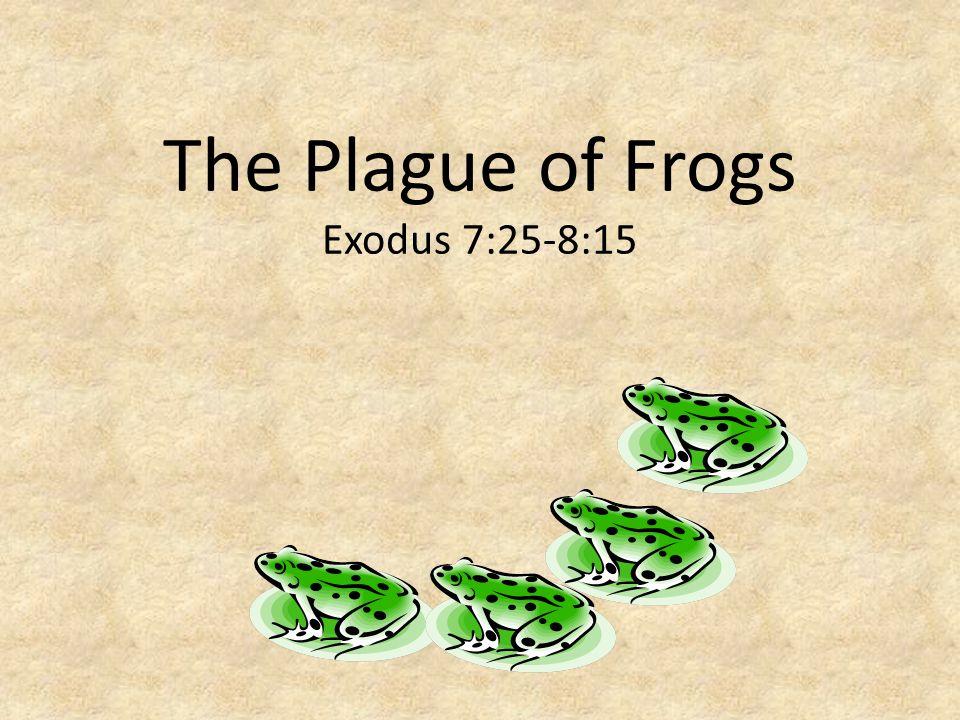 The Plague of Gnats Exodus 8:16-19