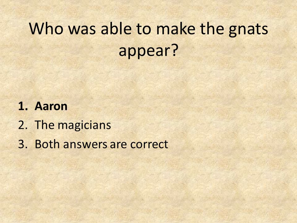 Who was able to make the gnats appear 1.Aaron 2.The magicians 3.Both answers are correct