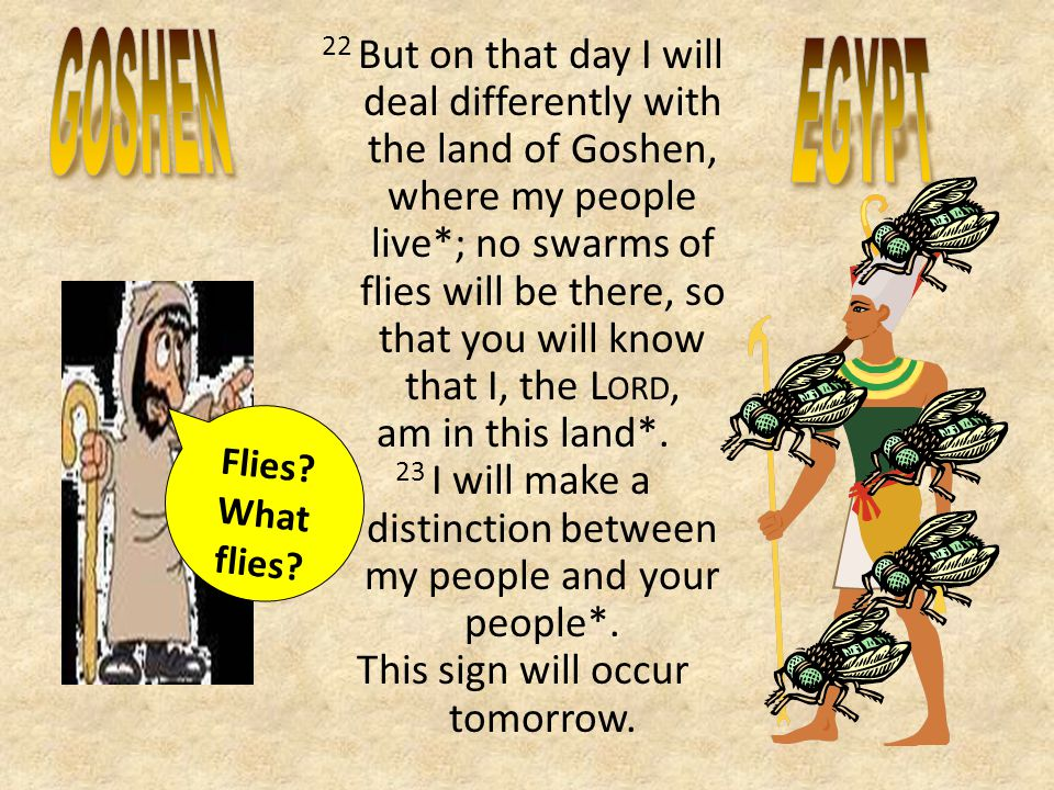 22 But on that day I will deal differently with the land of Goshen, where my people live*; no swarms of flies will be there, so that you will know that I, the L ORD, am in this land*.