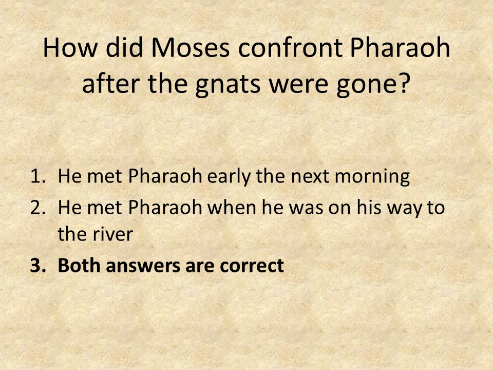 How did Moses confront Pharaoh after the gnats were gone.