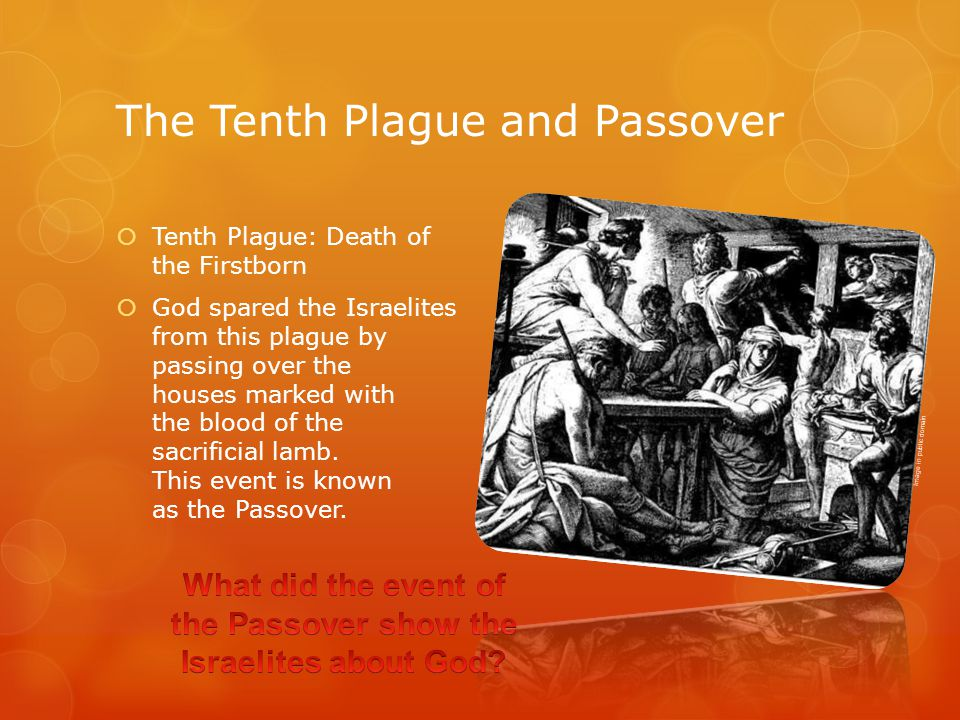 The Tenth Plague and Passover  Tenth Plague: Death of the Firstborn  God spared the Israelites from this plague by passing over the houses marked with the blood of the sacrificial lamb.