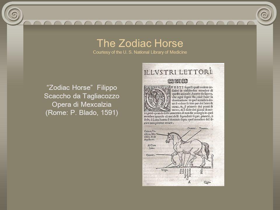 The Zodiac Horse Courtesy of the U. S.