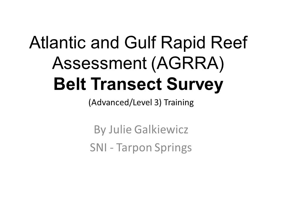 Atlantic and Gulf Rapid Reef Assessment (AGRRA) Belt Transect Survey (Advanced/Level 3) Training By Julie Galkiewicz SNI - Tarpon Springs