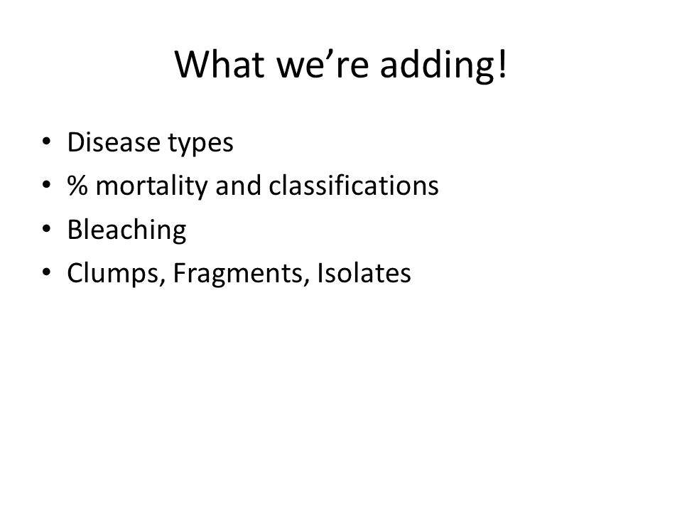 What we're adding! Disease types % mortality and classifications Bleaching Clumps, Fragments, Isolates