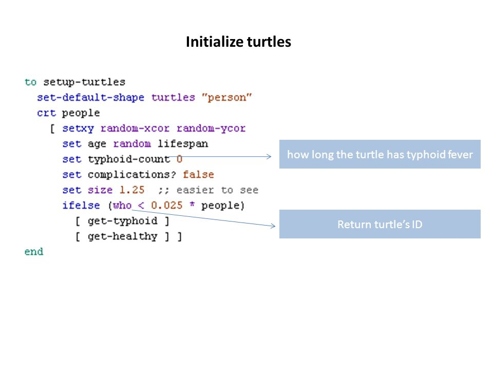 Initialize turtles how long the turtle has typhoid fever Return turtle's ID