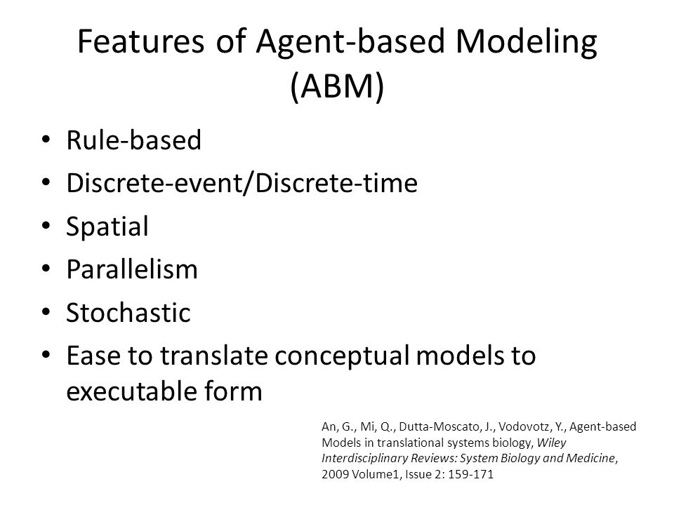 Components of ABM Turtle Patch Space