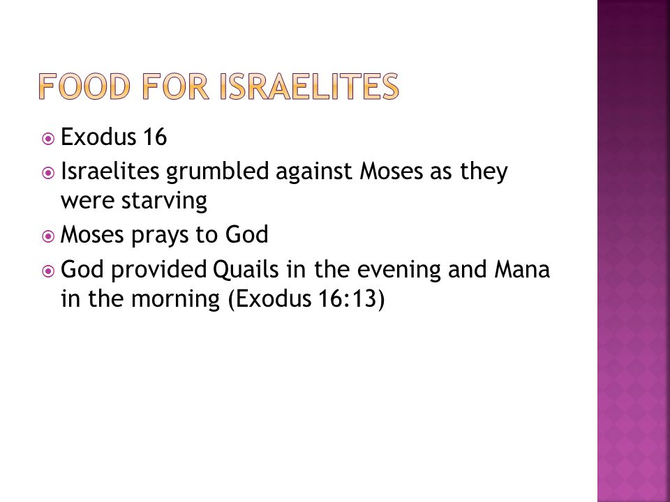  Exodus 16  Israelites grumbled against Moses as they were starving  Moses prays to God  God provided Quails in the evening and Mana in the morning (Exodus 16:13)