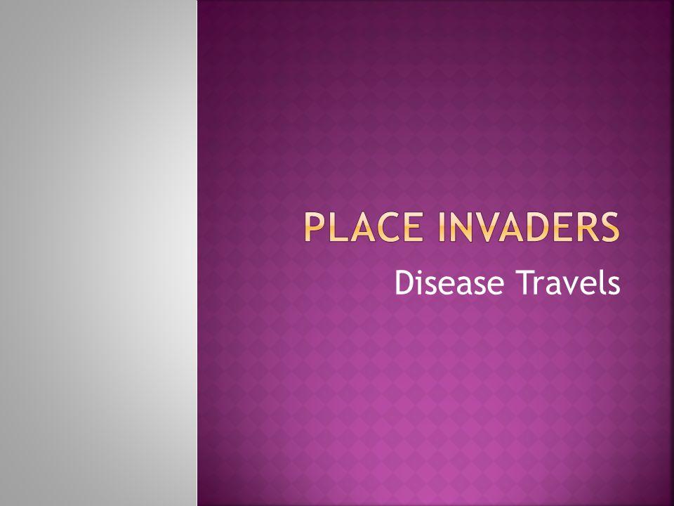 Disease Travels
