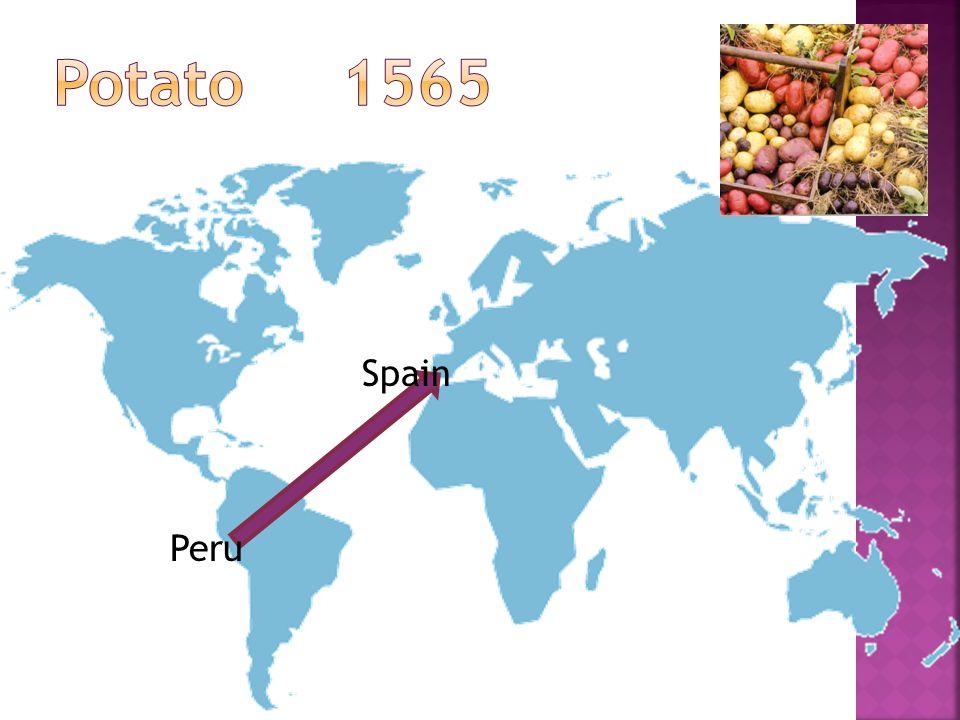 Peru Spain