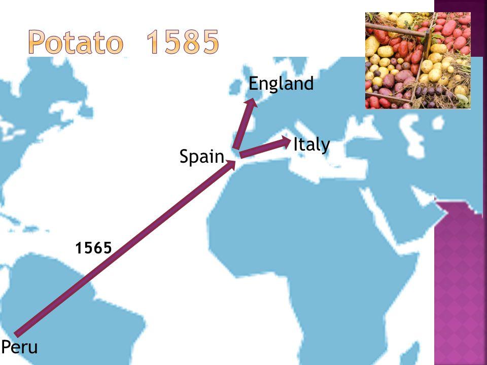 Peru Spain 1565 England Italy