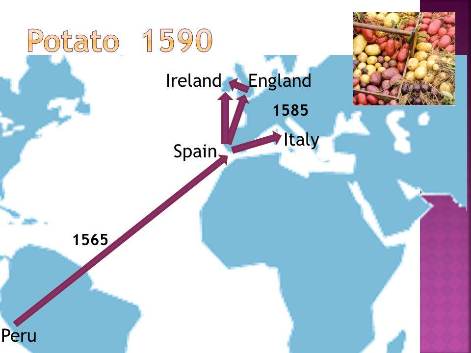 Peru Spain 1565 England Italy Ireland 1585