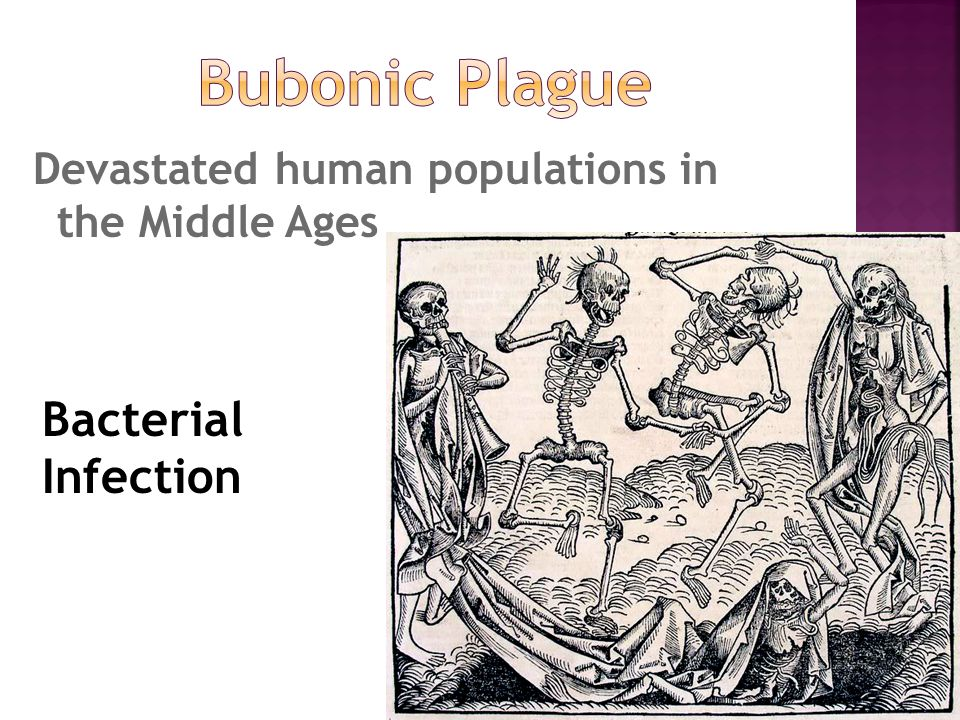 Devastated human populations in the Middle Ages Bacterial Infection