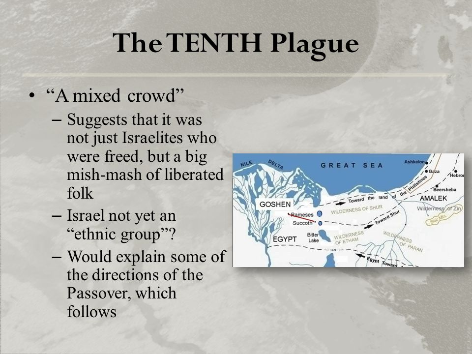 "The TENTH Plague ""A mixed crowd"" –Suggests that it was not just Israelites who were freed, but a big mish-mash of liberated folk –Israel not yet an ""e"