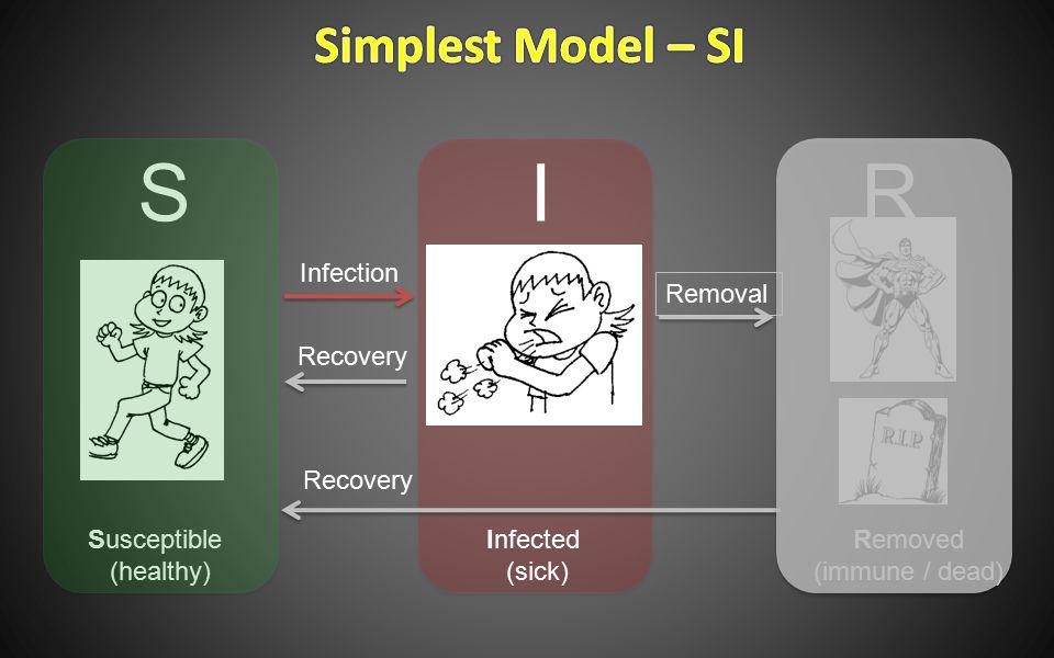  一个个体与任一其它个体接触的机会均等  一个易染个体与一个感染个体接触后被传 染的概率为