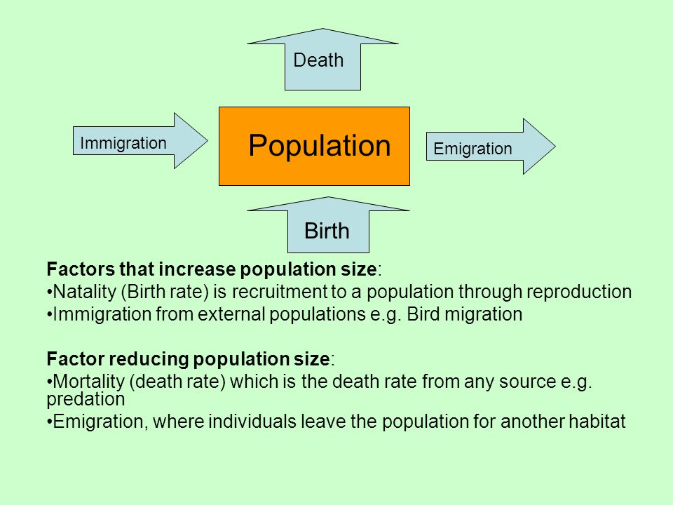 For a stable population: Immigration Emigration + Natality + Mortality =