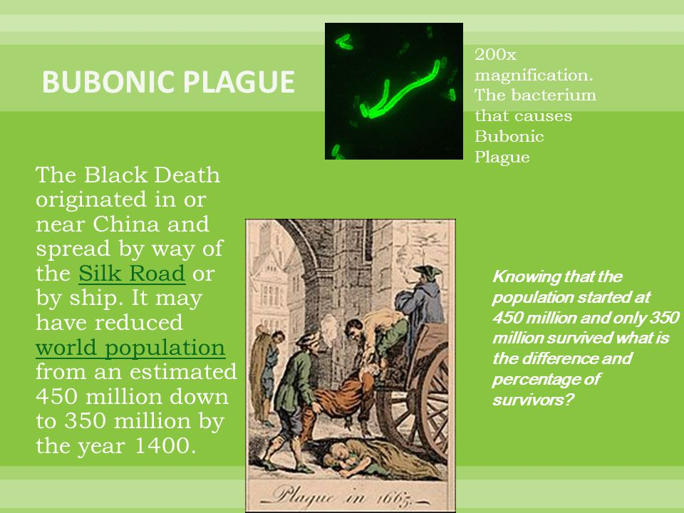 The Black Death originated in or near China and spread by way of the Silk Road or by ship.