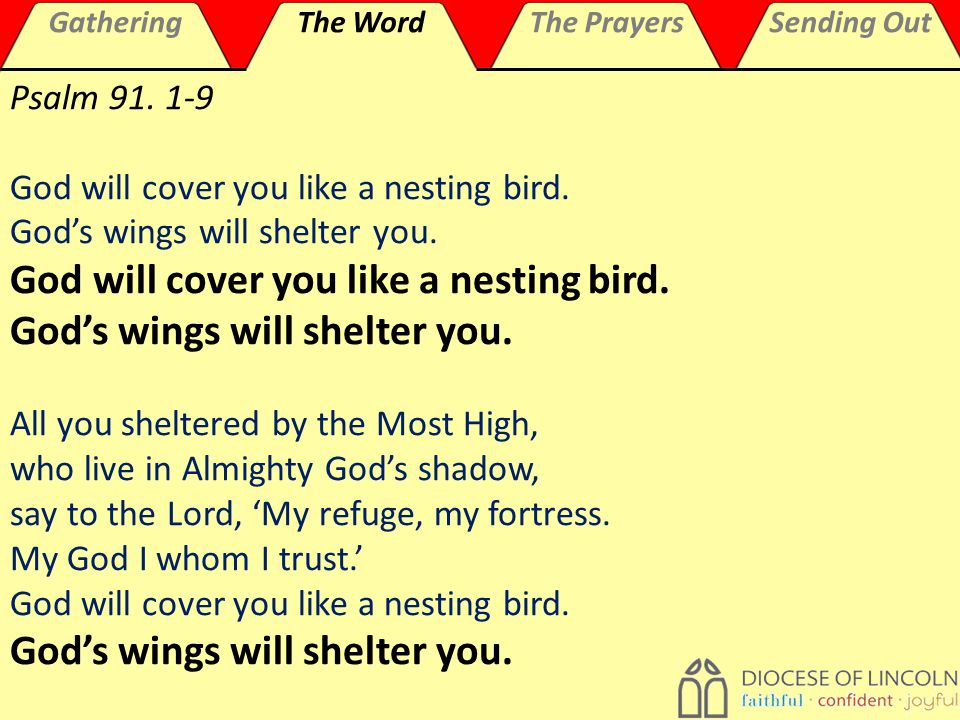 GatheringThe WordThe PrayersSending Out Psalm 91. 1-9 God will cover you like a nesting bird.