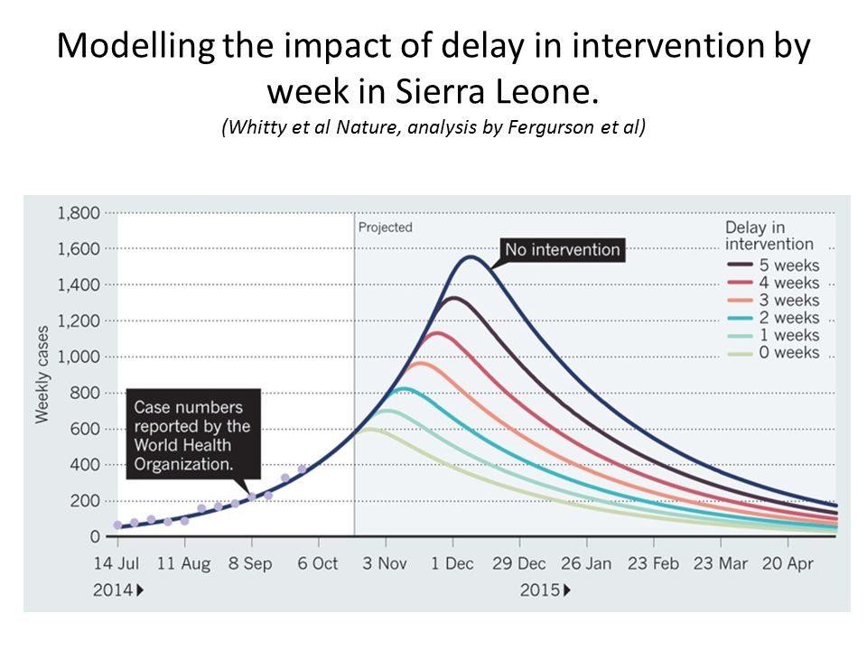 Modelling the impact of delay in intervention by week in Sierra Leone.