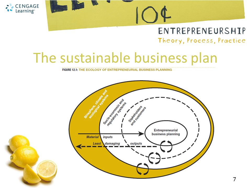 The sustainable business plan 7