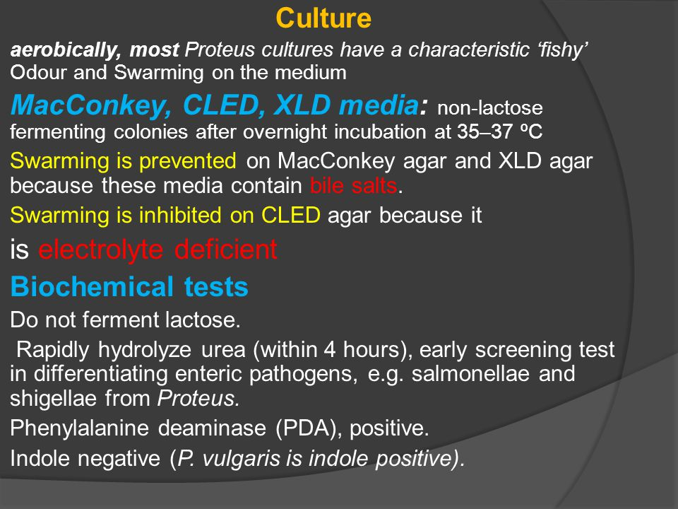 Culture aerobically, most Proteus cultures have a characteristic 'fishy' Odour and Swarming on the medium MacConkey, CLED, XLD media: non-lactose ferm