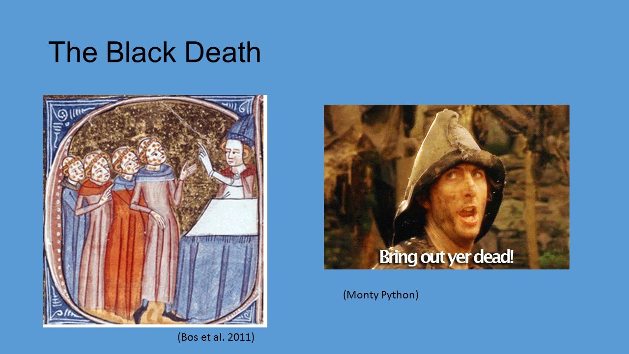 The Black Death (Bos et al. 2011) (Monty Python)