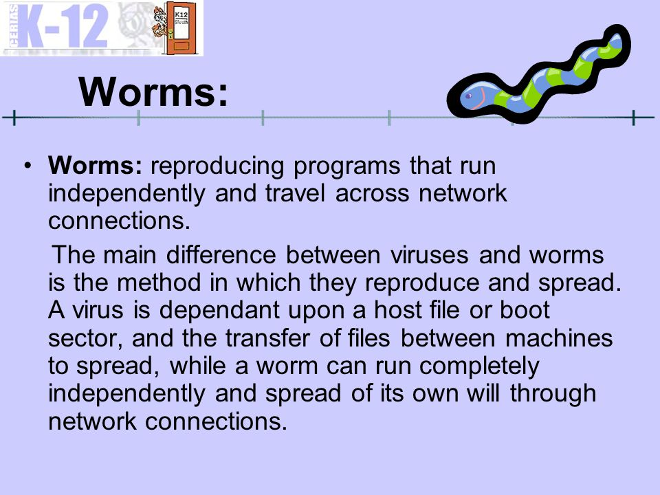 Worms: Worms: reproducing programs that run independently and travel across network connections. The main difference between viruses and worms is the