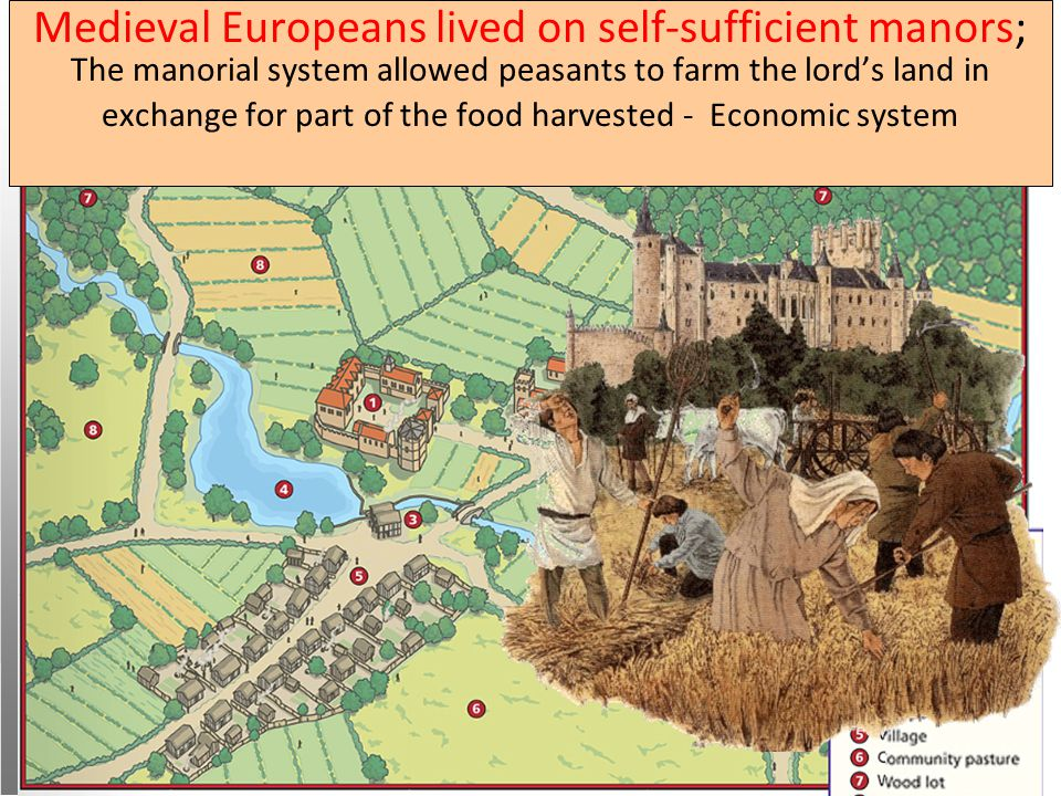 Western Europe in the Middle Ages Medieval Europeans lived on self-sufficient manors; The manorial system allowed peasants to farm the lord's land in exchange for part of the food harvested - Economic system