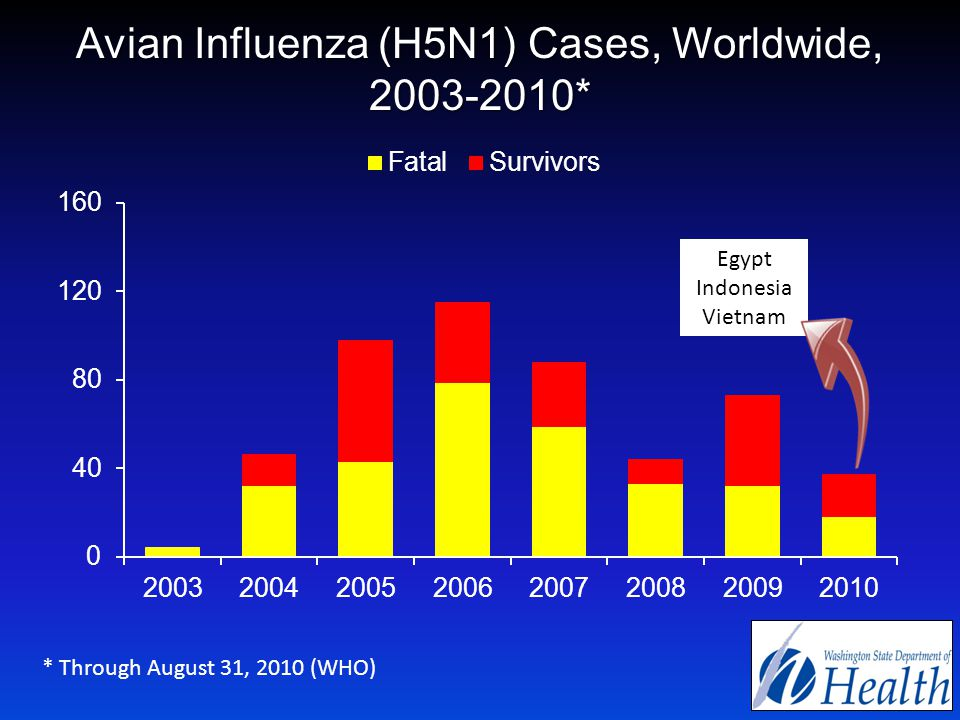 Avian Influenza (H5N1) Cases, Worldwide, 2003-2010* * Through August 31, 2010 (WHO) Egypt Indonesia Vietnam