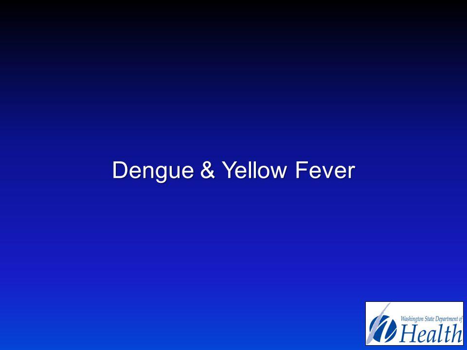 Dengue & Yellow Fever