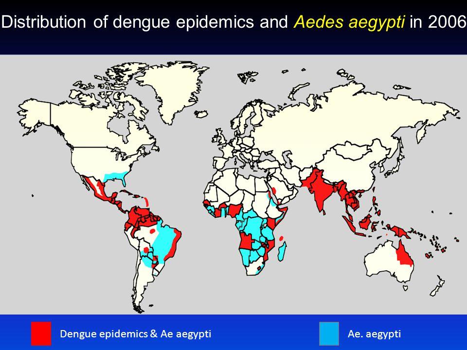Aedes aegypti Distribution of dengue epidemics and Aedes aegypti in 2006 Dengue epidemics & Ae aegyptiAe.