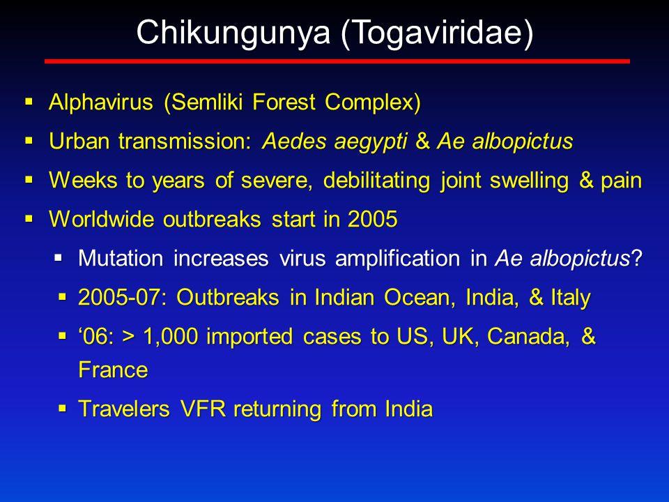 Chikungunya (Togaviridae)  Alphavirus (Semliki Forest Complex)  Urban transmission: Aedes aegypti & Ae albopictus  Weeks to years of severe, debilitating joint swelling & pain  Worldwide outbreaks start in 2005  Mutation increases virus amplification in Ae albopictus.