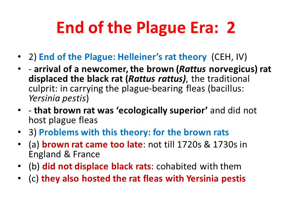 End of the Plague Era: 2 2) End of the Plague: Helleiner's rat theory (CEH, IV) - arrival of a newcomer, the brown (Rattus norvegicus) rat displaced t