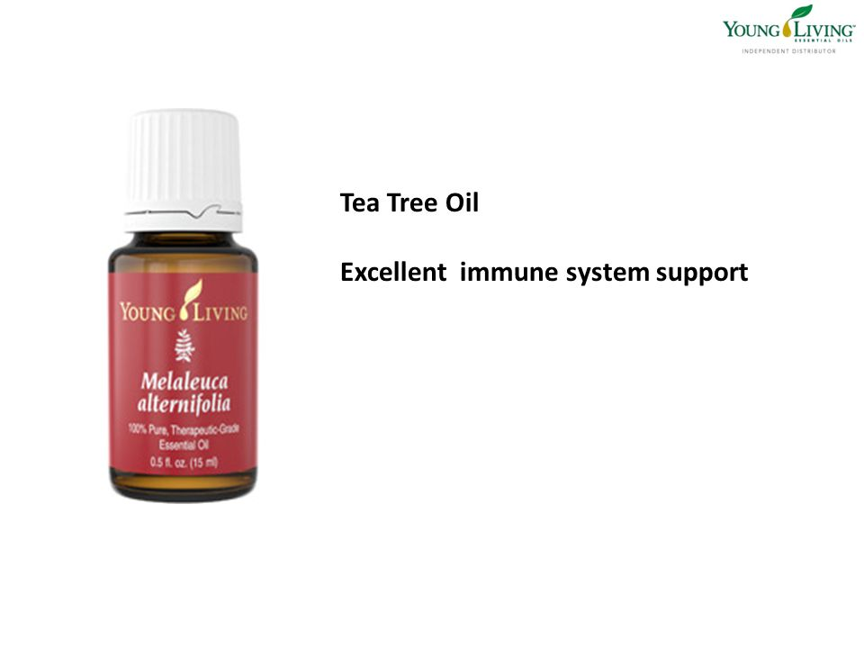 Tea Tree Oil Excellent immune system support