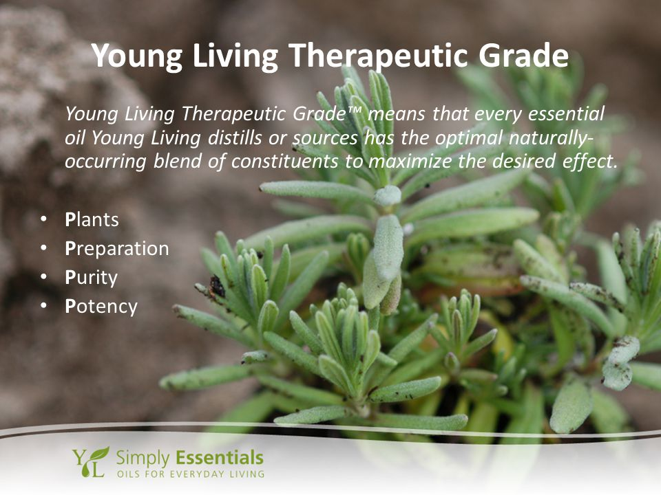 Young Living Therapeutic Grade Young Living Therapeutic Grade™ means that every essential oil Young Living distills or sources has the optimal natural