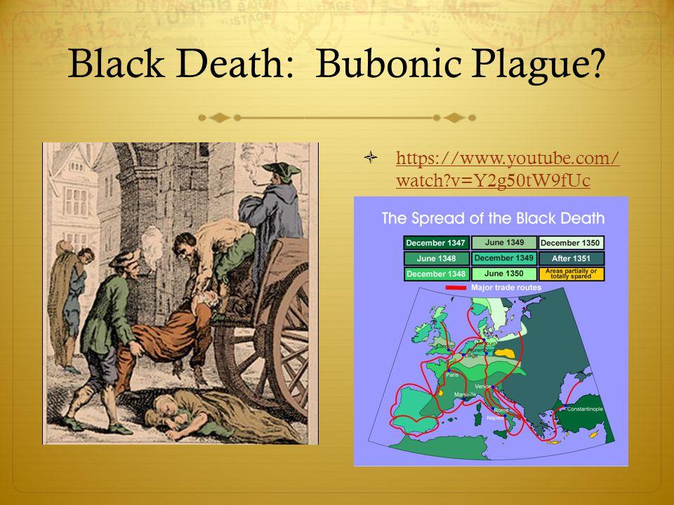 Black Death: Bubonic Plague.