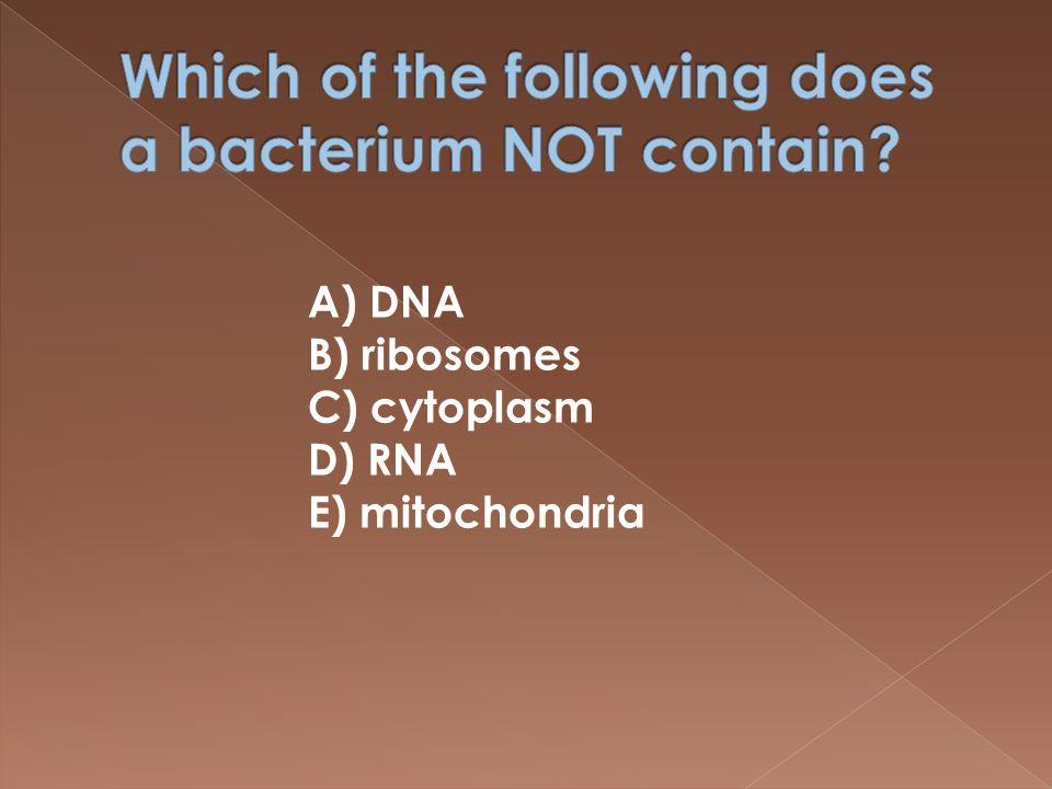A) DNA B) ribosomes C) cytoplasm D) RNA E) mitochondria