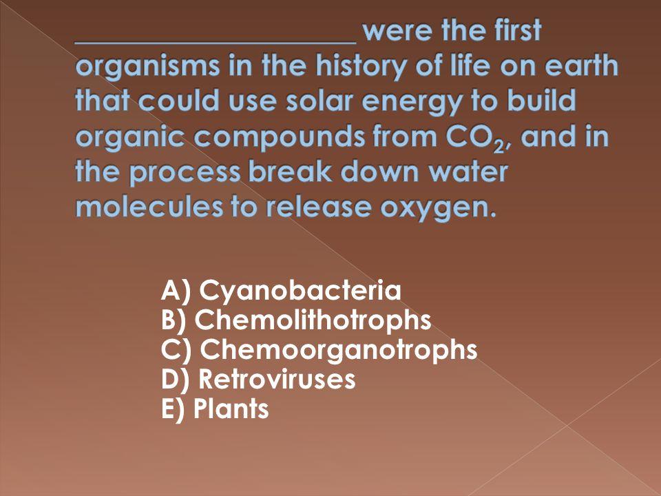 A) Cyanobacteria B) Chemolithotrophs C) Chemoorganotrophs D) Retroviruses E) Plants