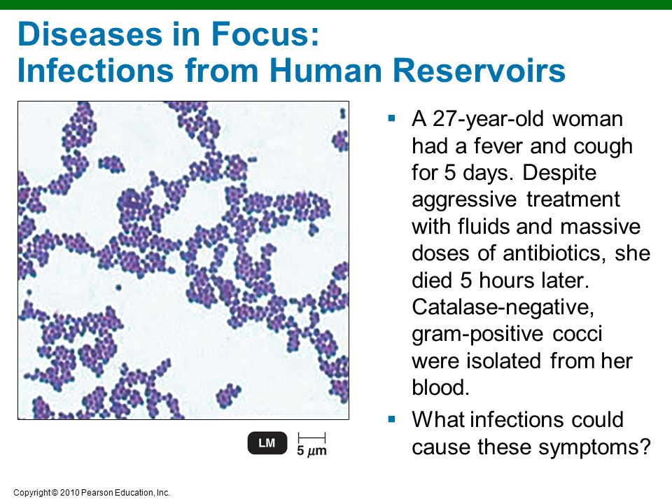 Copyright © 2010 Pearson Education, Inc. Diseases in Focus: Infections from Human Reservoirs  A 27-year-old woman had a fever and cough for 5 days. D