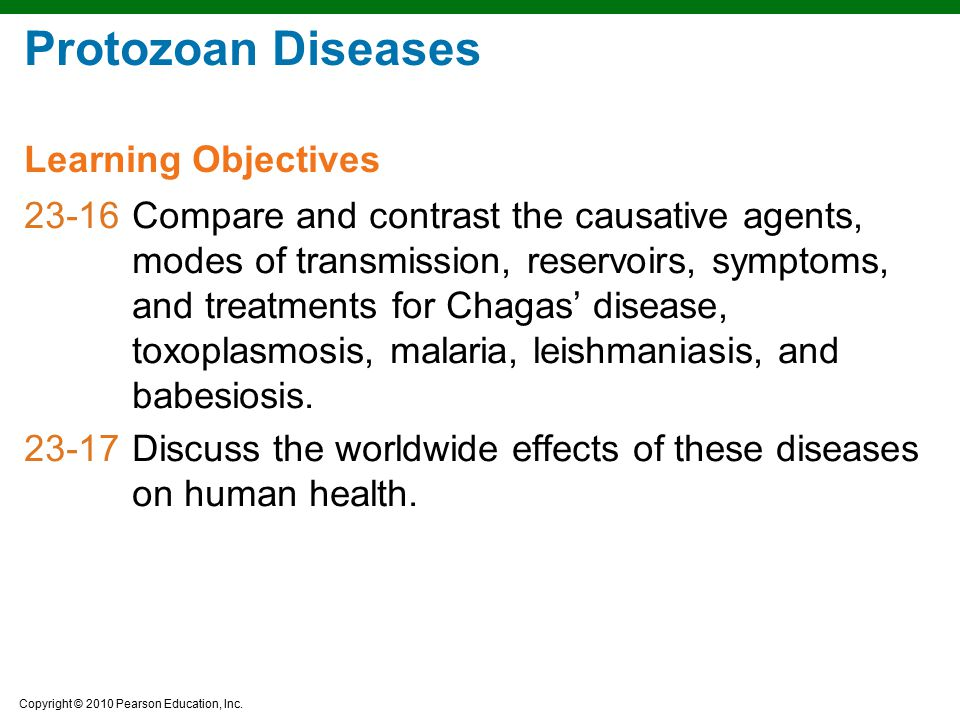 Copyright © 2010 Pearson Education, Inc. Protozoan Diseases 23-16Compare and contrast the causative agents, modes of transmission, reservoirs, symptom