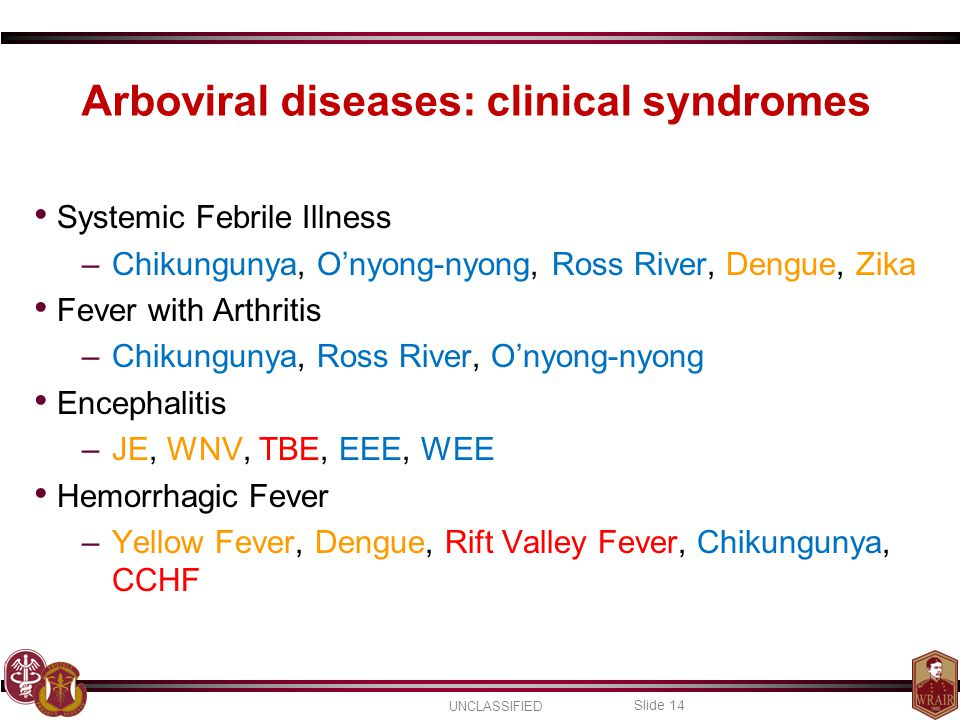 UNCLASSIFIED Slide 14 Arboviral diseases: clinical syndromes Systemic Febrile Illness –Chikungunya, O'nyong-nyong, Ross River, Dengue, Zika Fever with