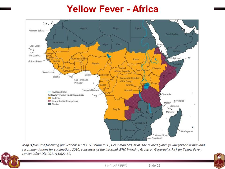 UNCLASSIFIED Slide 28 Yellow Fever - Africa