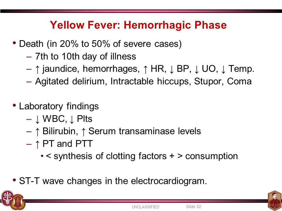 UNCLASSIFIED Slide 32 Death (in 20% to 50% of severe cases) –7th to 10th day of illness –↑ jaundice, hemorrhages, ↑ HR, ↓ BP, ↓ UO, ↓ Temp.