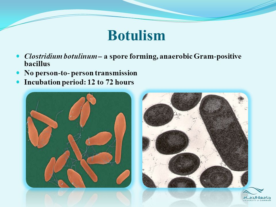 Botulism There are 7 neurotoxins (A-G) LD 50 =0.001 µg/kg (the most potent chemical warfare agent) Affect the motor nerve terminus with irreversibly blocks the release of acetylcholine Muscle paralysis lasts until axonal branches regenerate