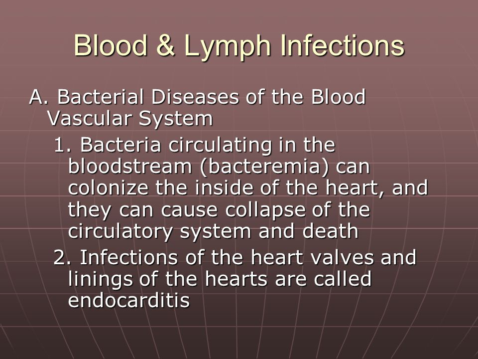 Blood & Lymph Infections A. Bacterial Diseases of the Blood Vascular System 1. Bacteria circulating in the bloodstream (bacteremia) can colonize the i