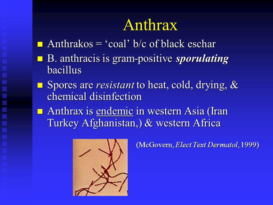 Anthrax Anthrakos = 'coal' b/c of black eschar Anthrakos = 'coal' b/c of black eschar B.